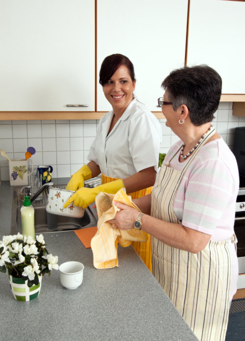 Caregiver washing dishes with an old woman